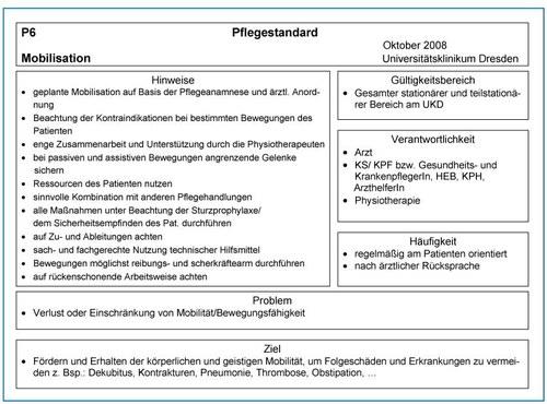 Pflegestandards im Uniklinikum Dresden